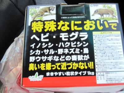 IMG_0707_convert_20100927182342.jpg