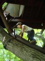 ツリーハウスはしご