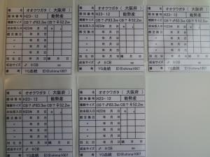 YG管理カード