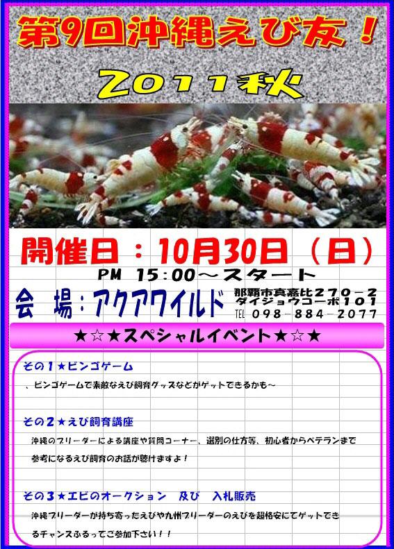 2011okinawa