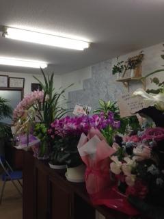 201401お祝いの花