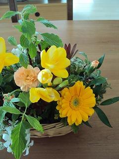 黄色い花を
