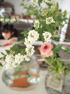 好きな花があったので