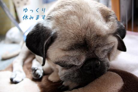ゆっくり休んでねv^^
