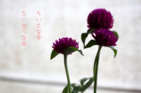 10-6-3.jpg
