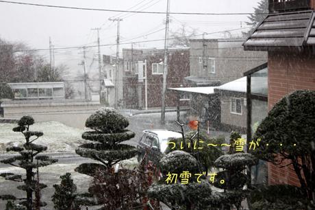ついに。。。冬だね~~!!