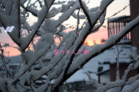晴れてきて。。。ピンクの空