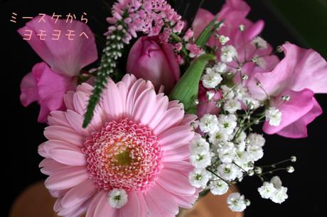 蓬のお花。。。