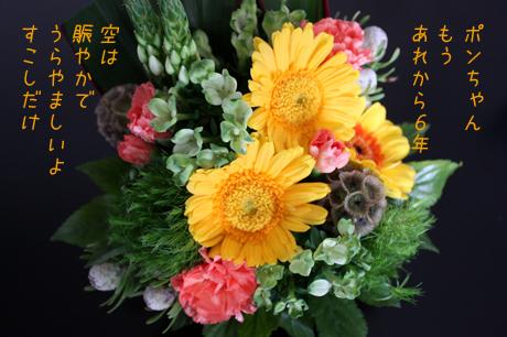 ポン吉に似合う・・・かな!!お花。