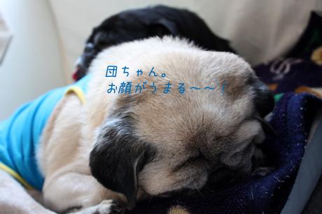 眠くて・・・眠くて・・・