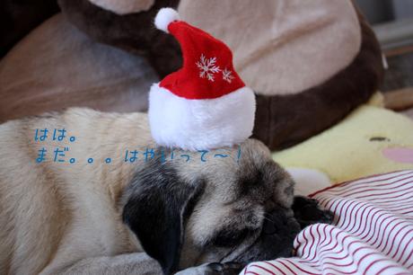 クリスマスにはまだ・・・間があるぞ!