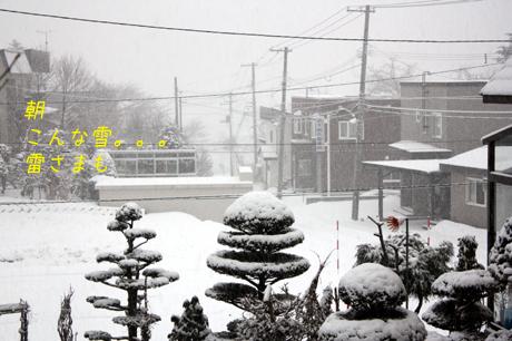 外はこんな雪だったんだ!!