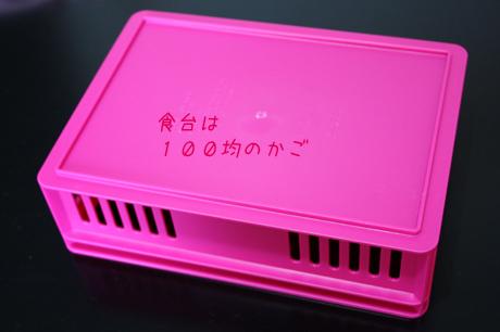 ピンクが可愛いでしょ~v^^
