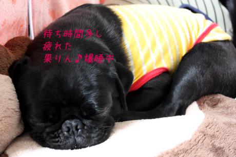疲れちゃった~!