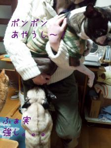 ポンポンより強いの~~@@