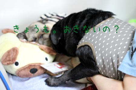 7-15-1_20120717144737.jpg