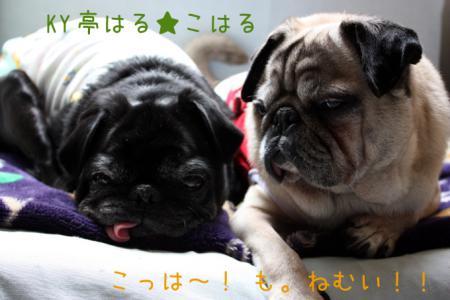 futari5.jpg