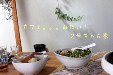 syoku6.jpg