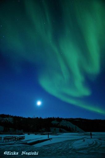 月とおばけ風