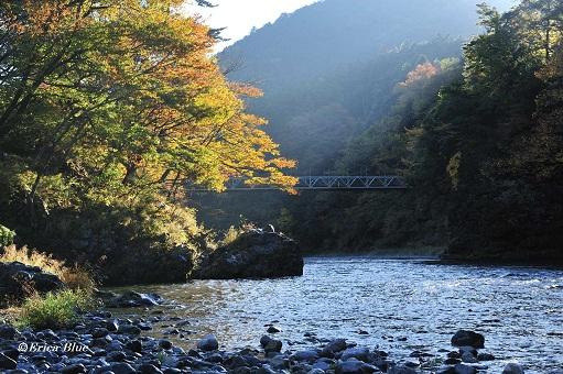 晩秋・渓谷の朝