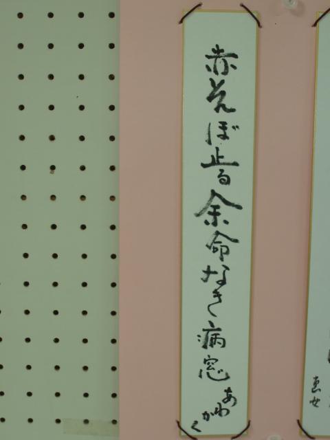 10-10-31 俳星会 アカトンボ