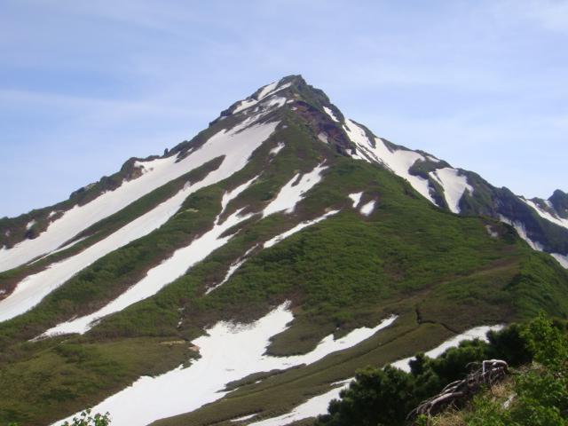 長官山から利尻山を望む