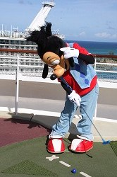 DCL2012 277