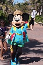 DCL2012 506