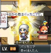 Maple100710_103320.jpg