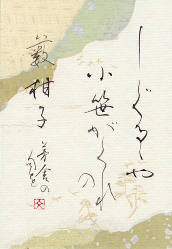 2013薮柑子