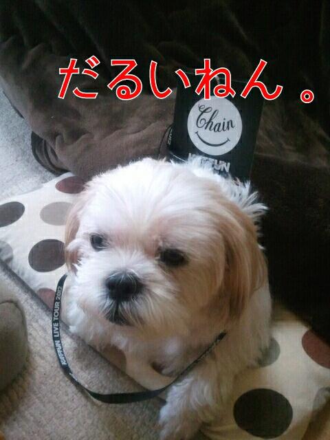 iphone_20120313223622.jpg