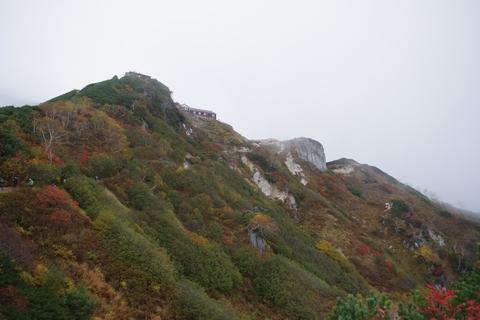 燕山荘 紅葉