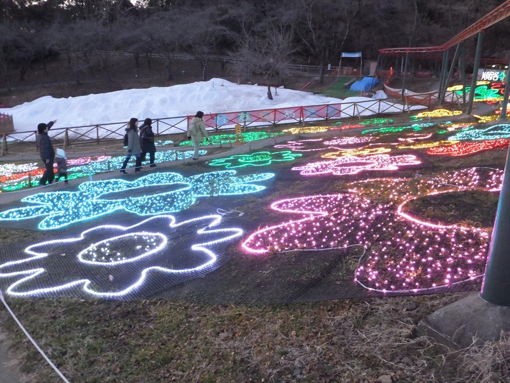 光の花絨毯_2