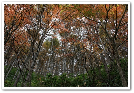 2011-10-21-3.jpg