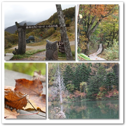 2011-10-21-9.jpg