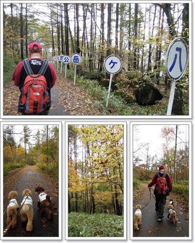 2011-10-23-2.jpg