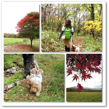 2011-10-23-4.jpg