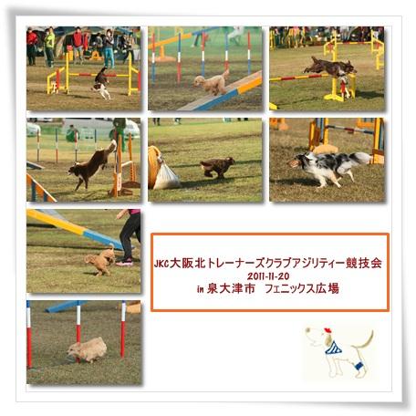 2011-11-20-1.jpg