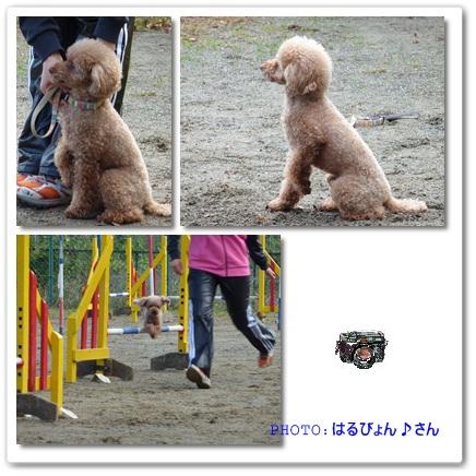 2011-11-23-1.jpg