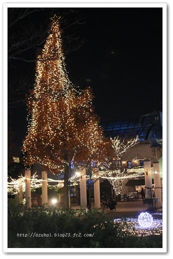 2011-12-15-12.jpg
