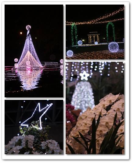 2011-12-15-15.jpg