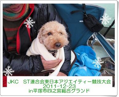 2011-12-23-1111.jpg