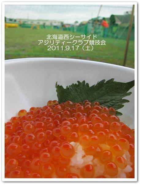 2011-9-17-3.jpg