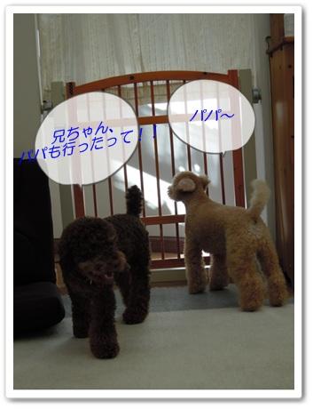 2011-9-28-3.jpg