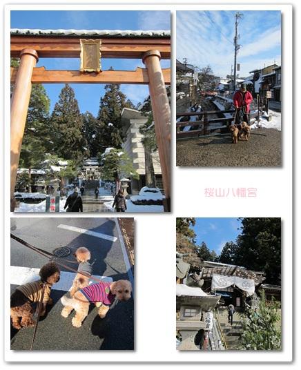 2012-01-03-1.jpg