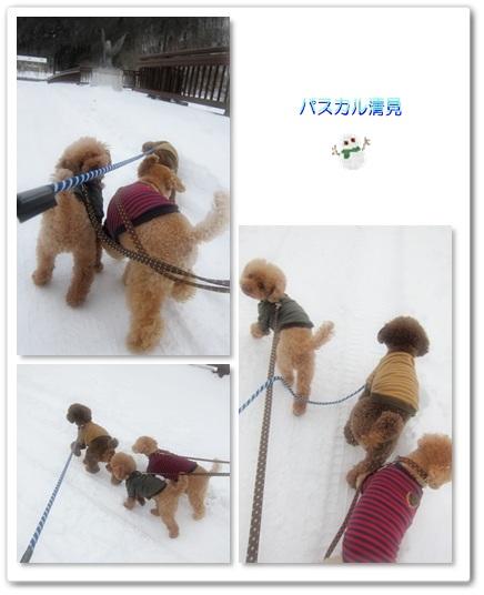 2012-01-03-2.jpg