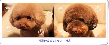 2012-01-26.jpg
