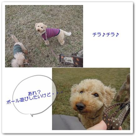 2012-12-2-4.jpg