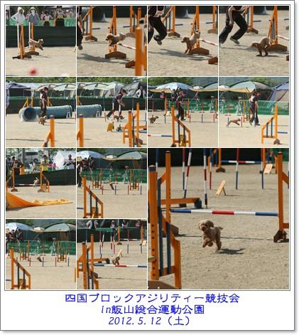 2012-5-13-112.jpg
