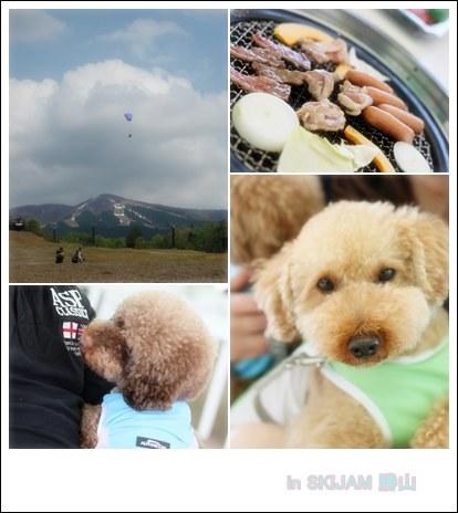2012-5-5-11.jpg